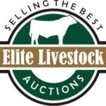 Elite Livestock Logo